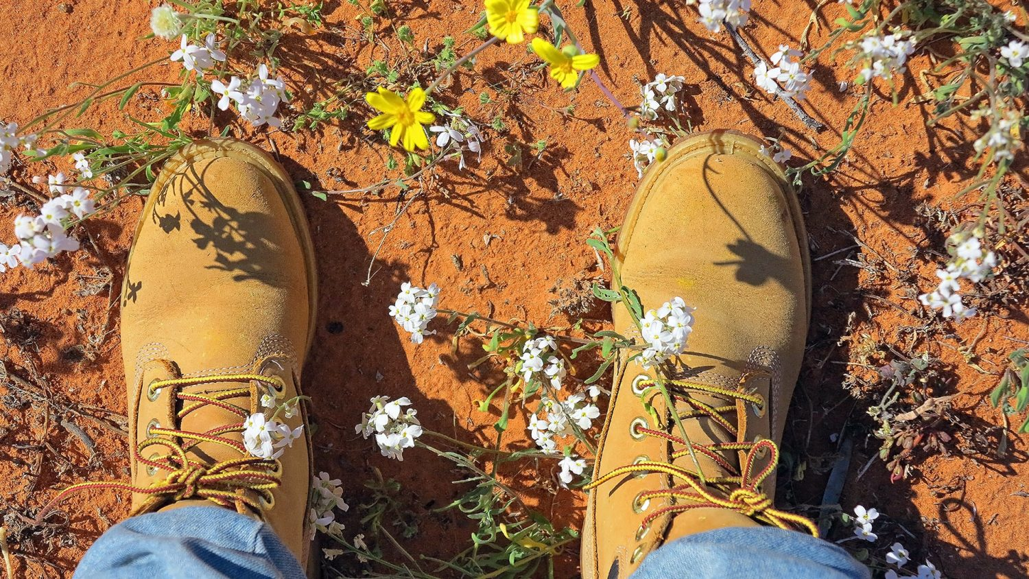 Walking boots in the Simpson Desert.