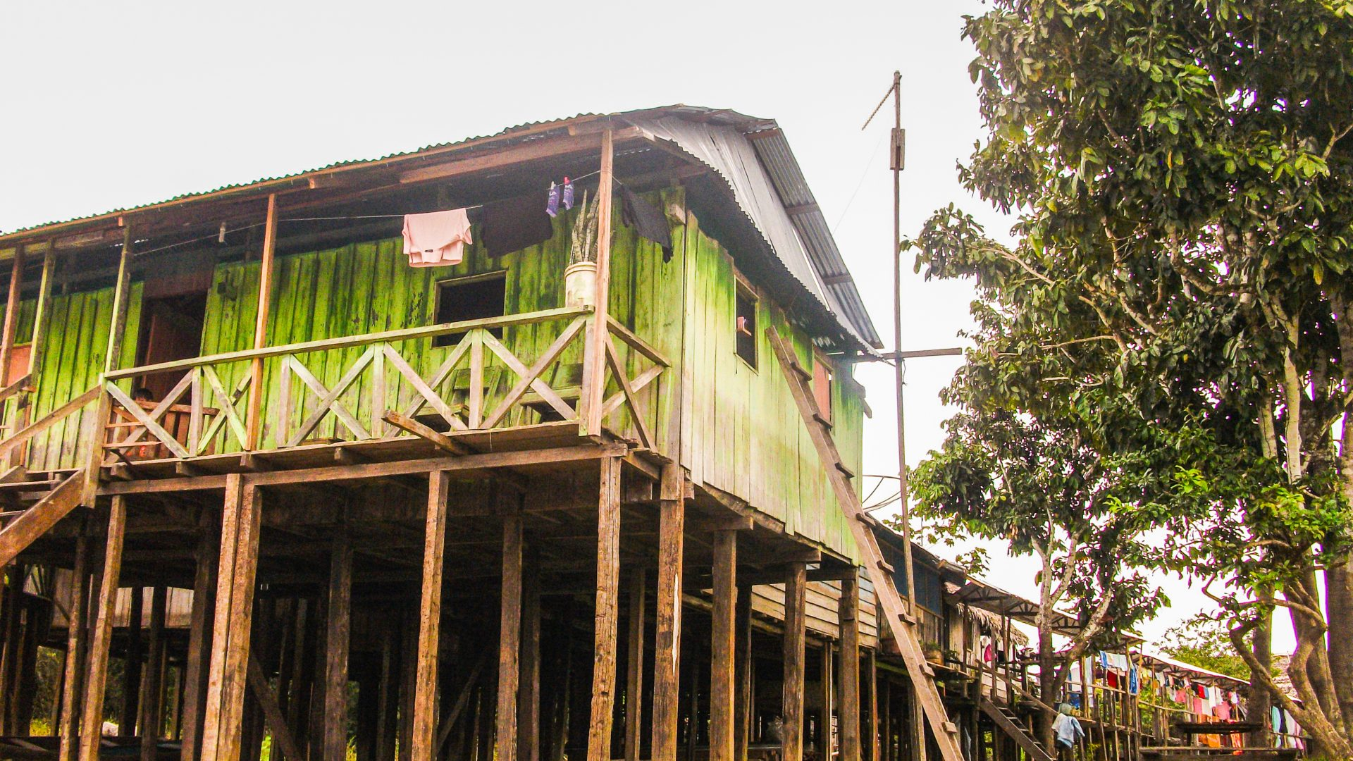 A house on stilts in the Amazon jungle.