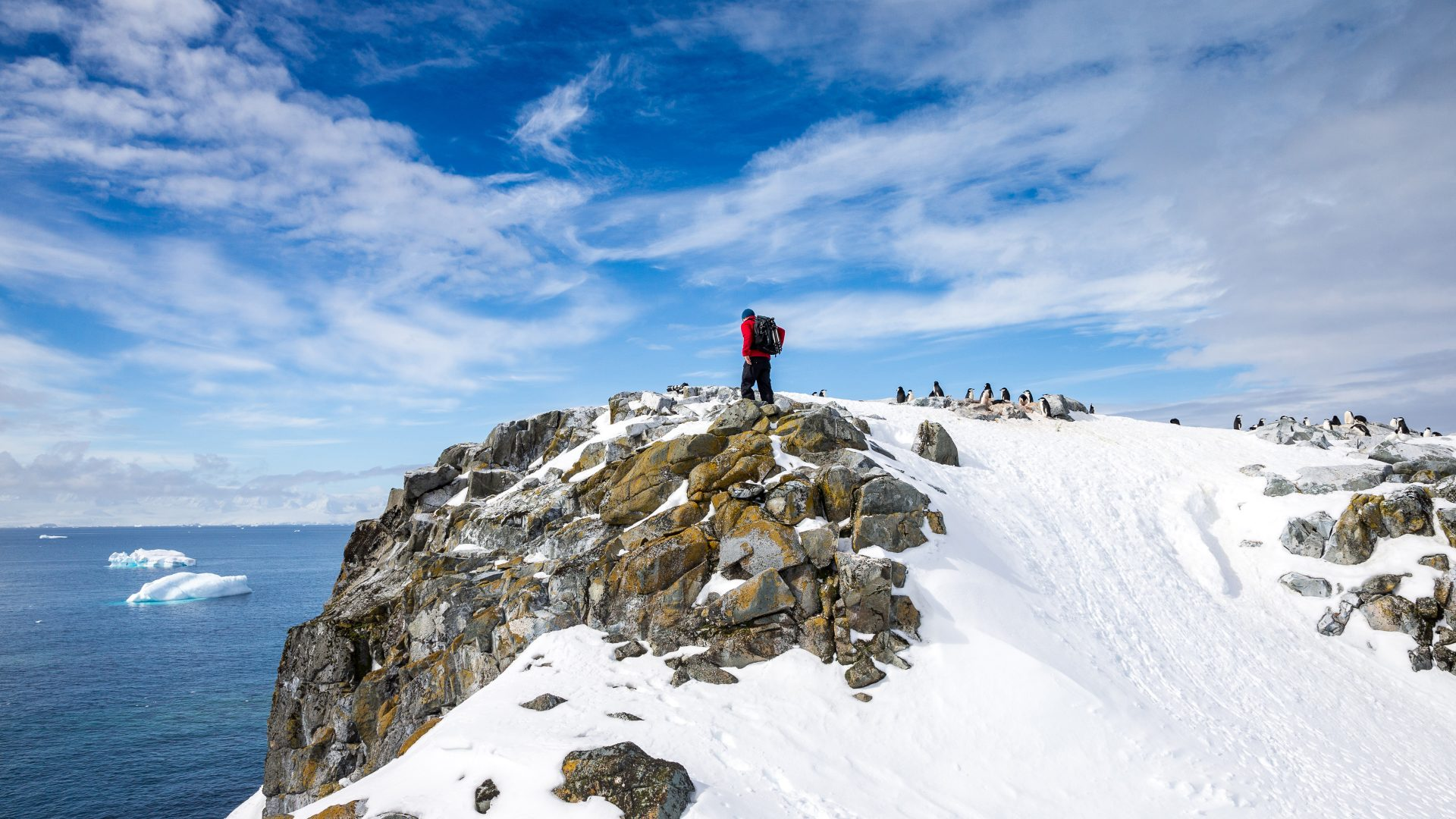 A tourist looks out over the water from a snowy peak in Antarctica.