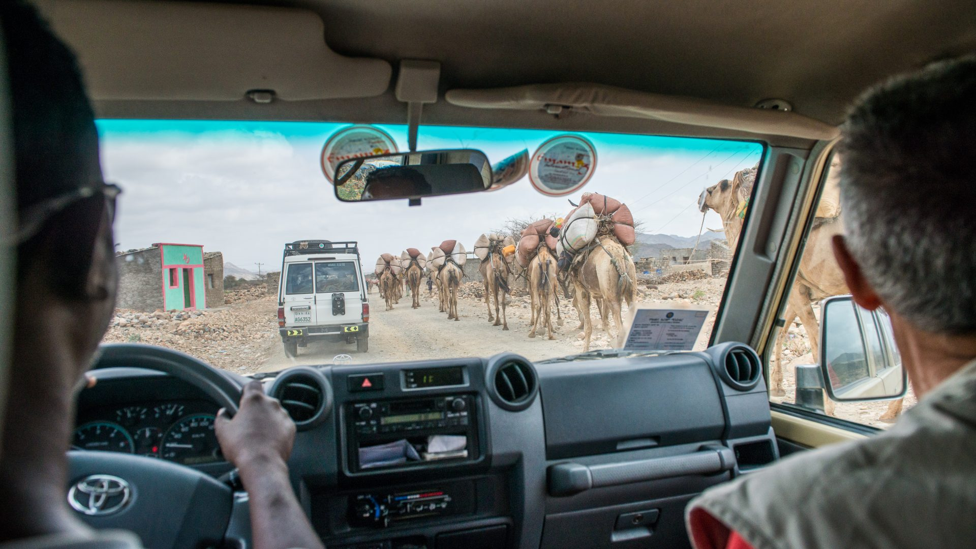 Through the window of the tourist jeep camels laden with salt can be seen making their way up the road in the Danakil Depression, Ethiopia.