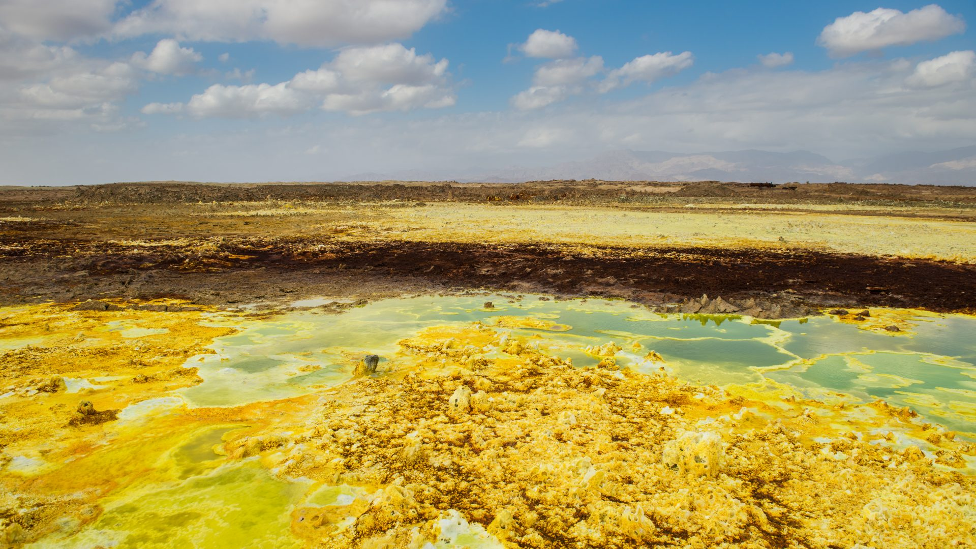Surreal colors of green, yellow and brown make up the sulphur pools in the Danakil Depression, Ethiopia.
