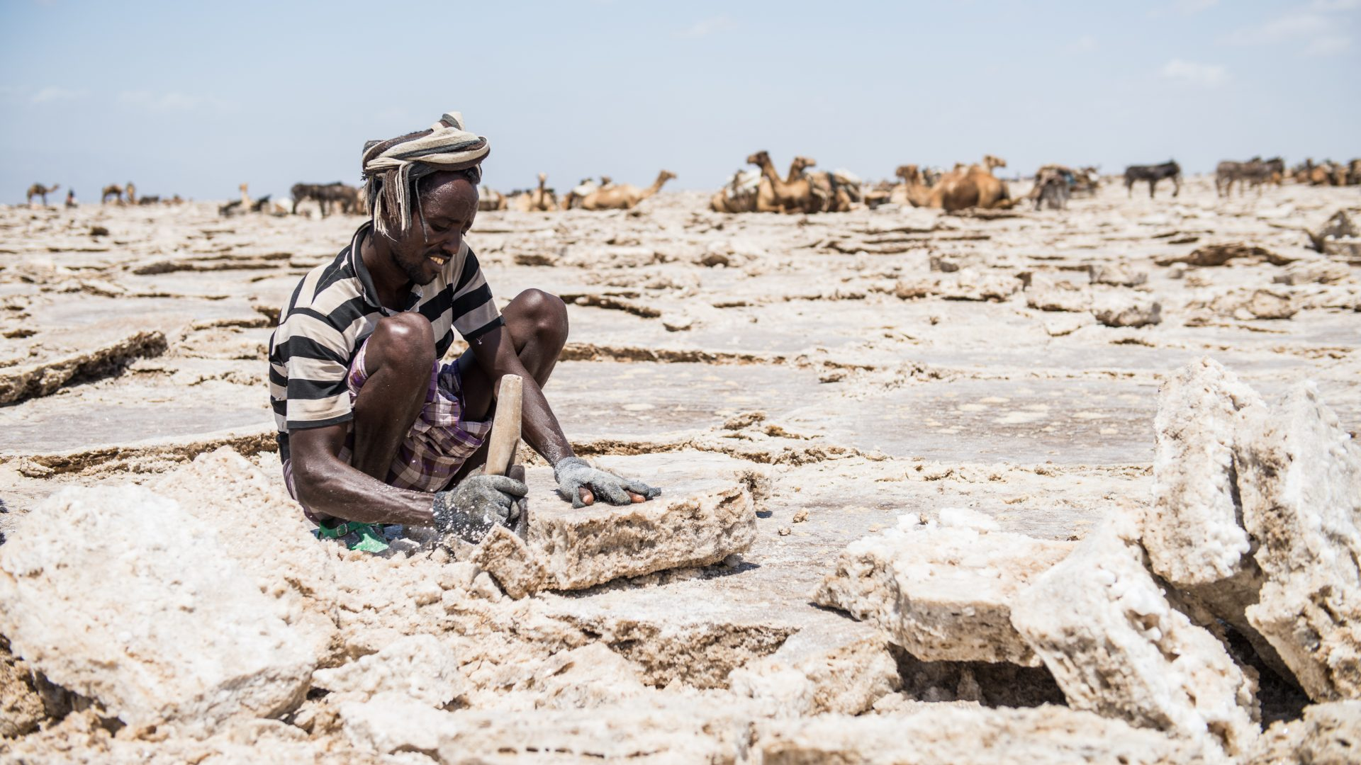 A man cuts slabs of salt from the salt plains in the North East of Ethiopia.