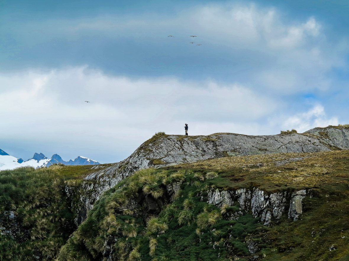 A solitary figure stands on a rocky outcrop under moody clouds on South Georgia Island.
