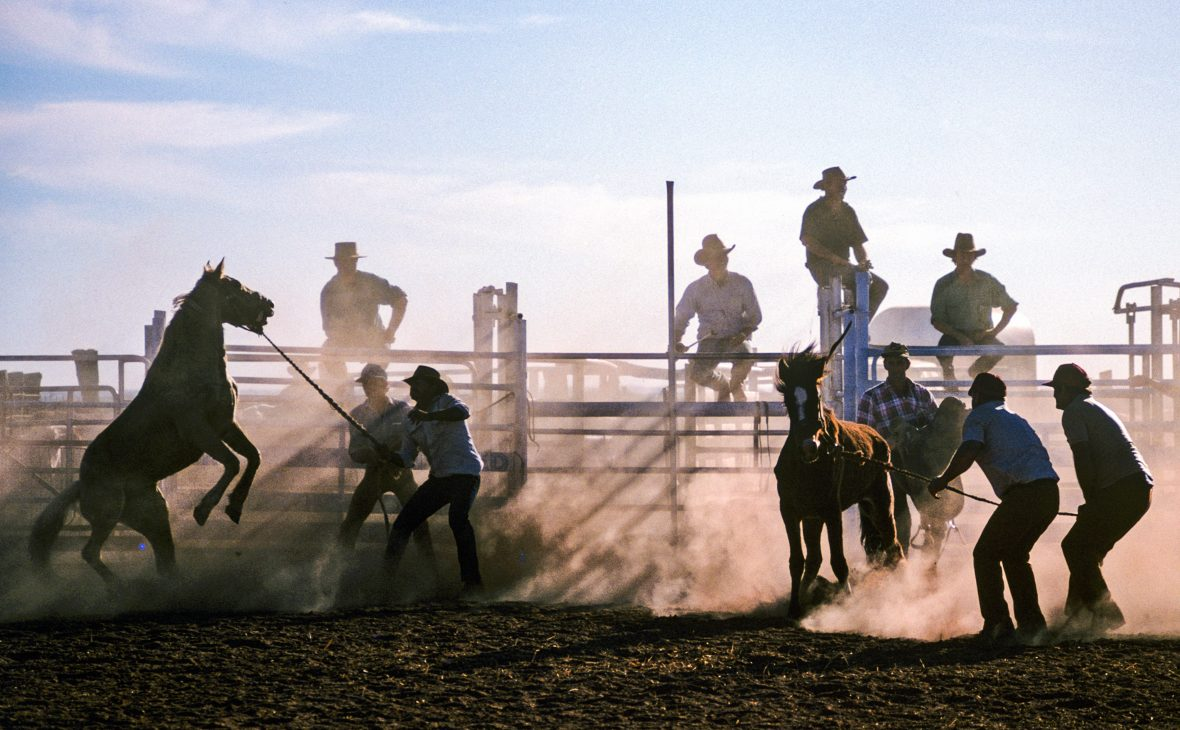 Men at a rodeo in outback Australia sit on fences as horses are rounded up.