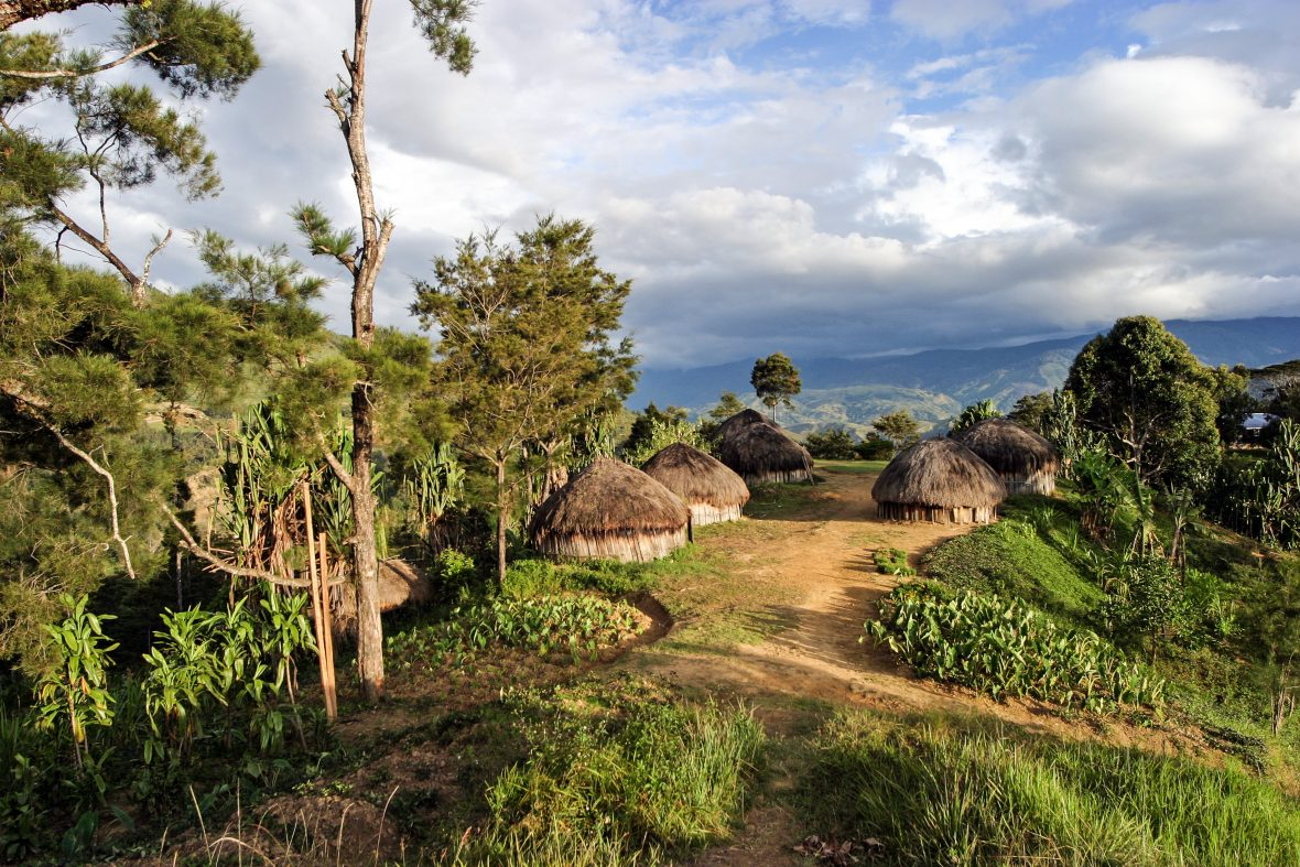 A traditional village in the hills of Papua New Guinea.
