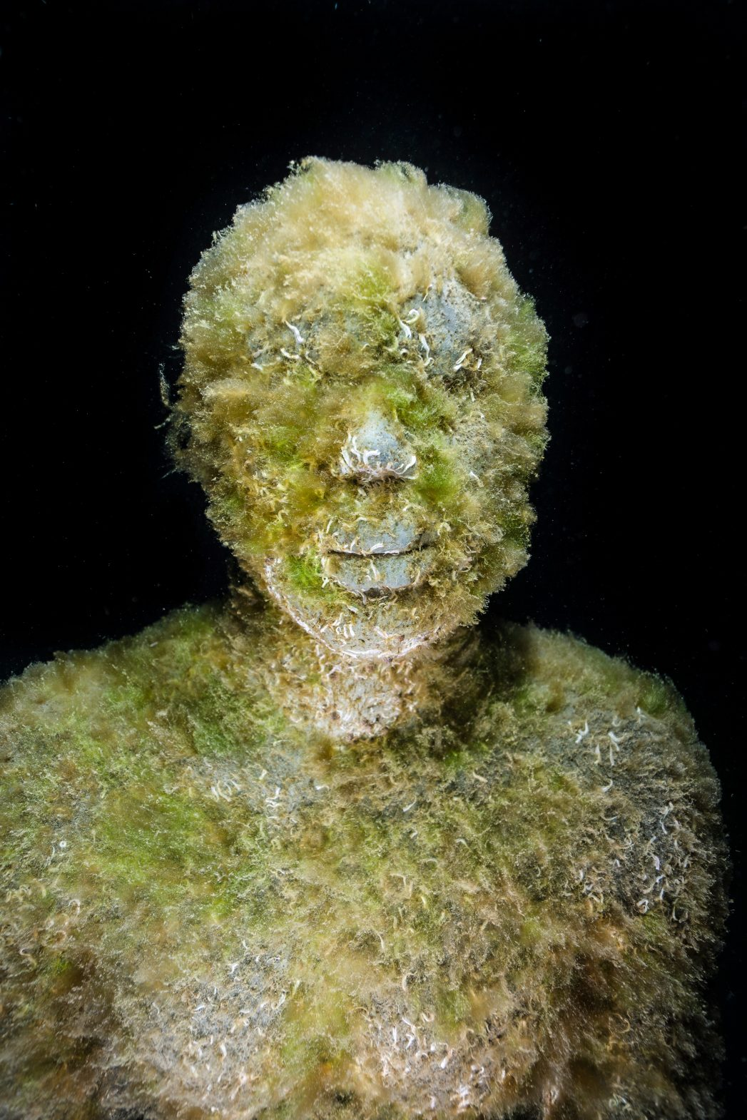 Jason deCaires Taylor's underwater sculptures become homes for sea life.