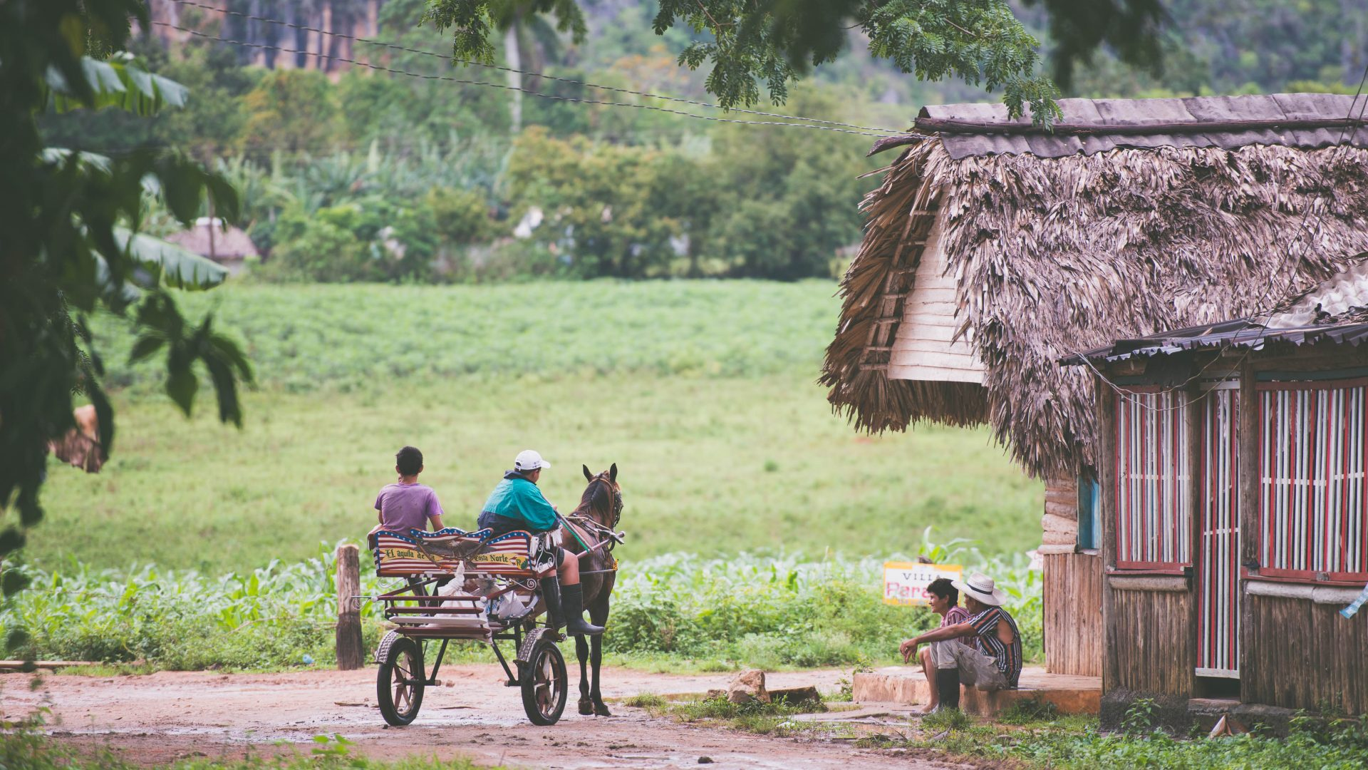 Men on their horse cart pause to talk with a neighbor in the green fields of Viñales, Cuba.