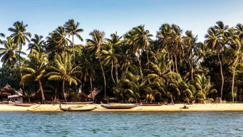 The village of Yele island in Sierra Leone is picture perfect with beautiful beaches lined with palm trees.