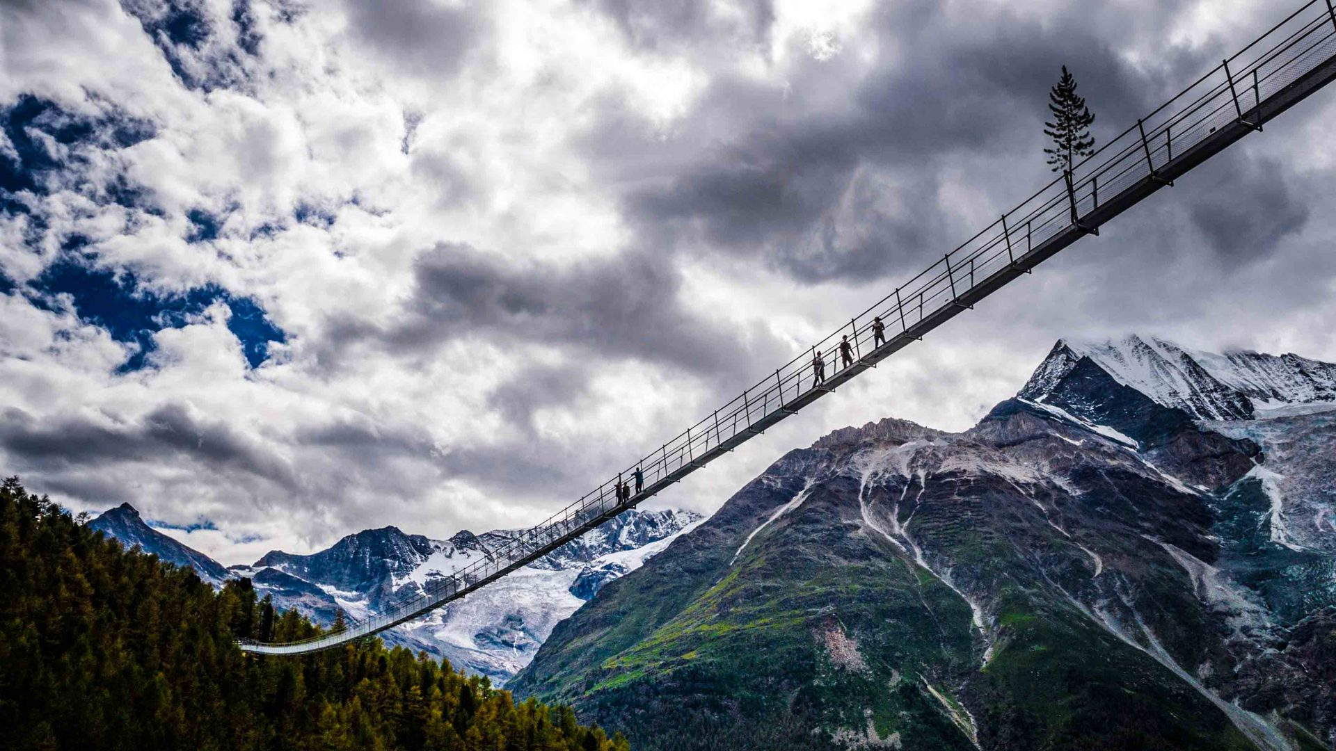 News wrap: World's longest suspension bridge, police fake Everest climb, eclipse fever hits and more