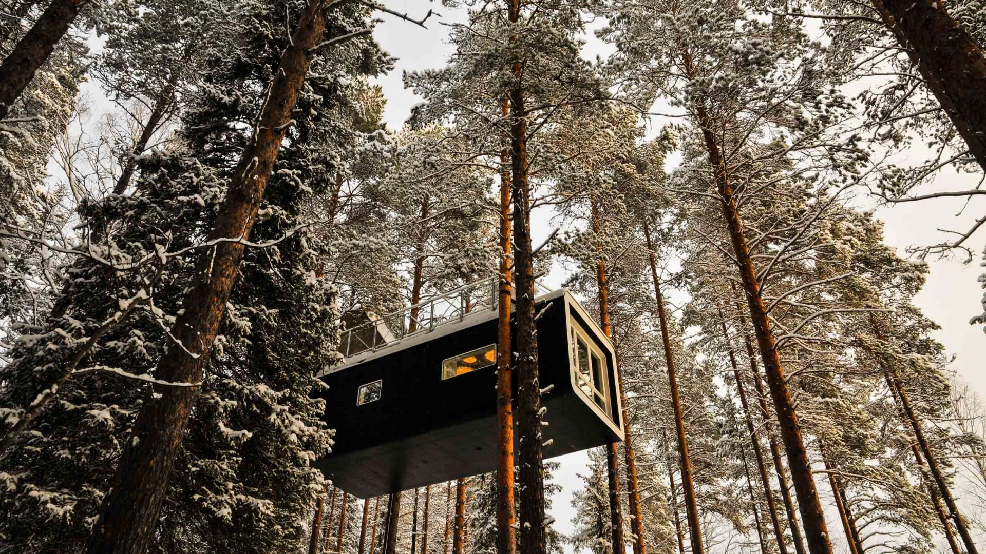 The Tree Hotel, Harads, Arctic Sweden.
