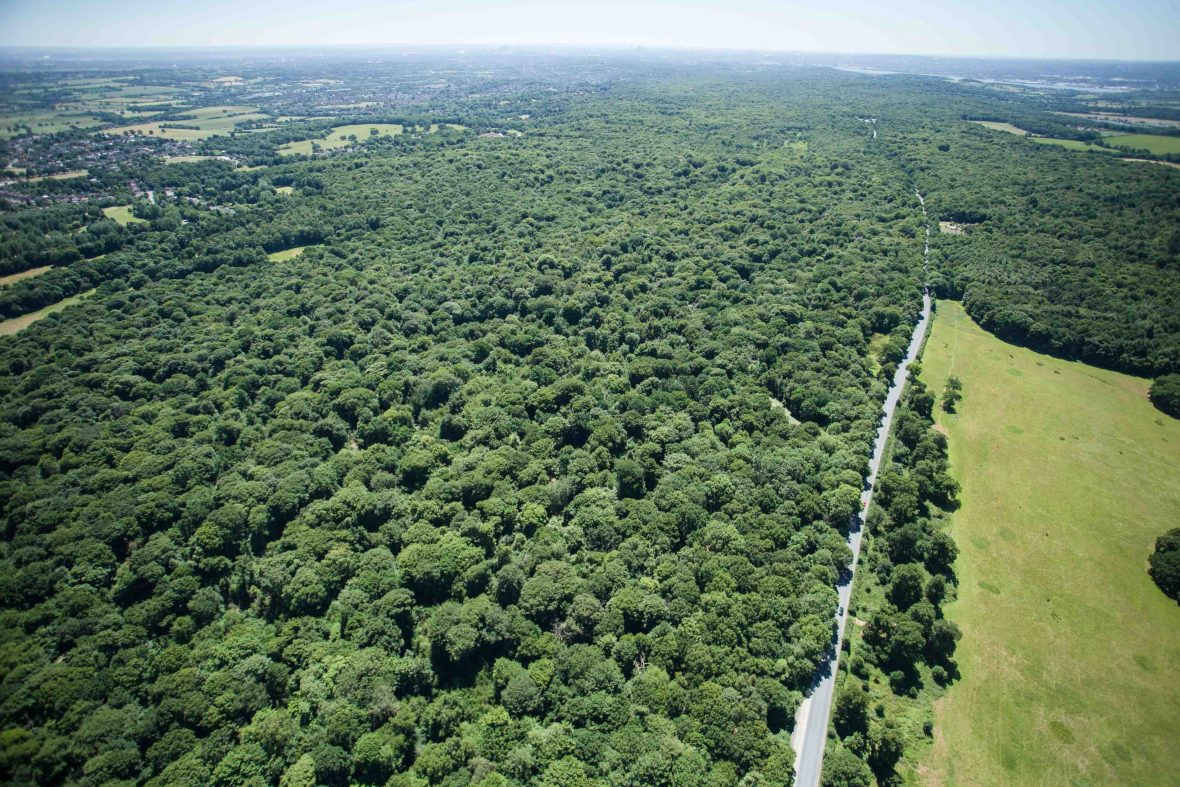 London National Park City: Aerial photo shows Epping Forest to Central London.