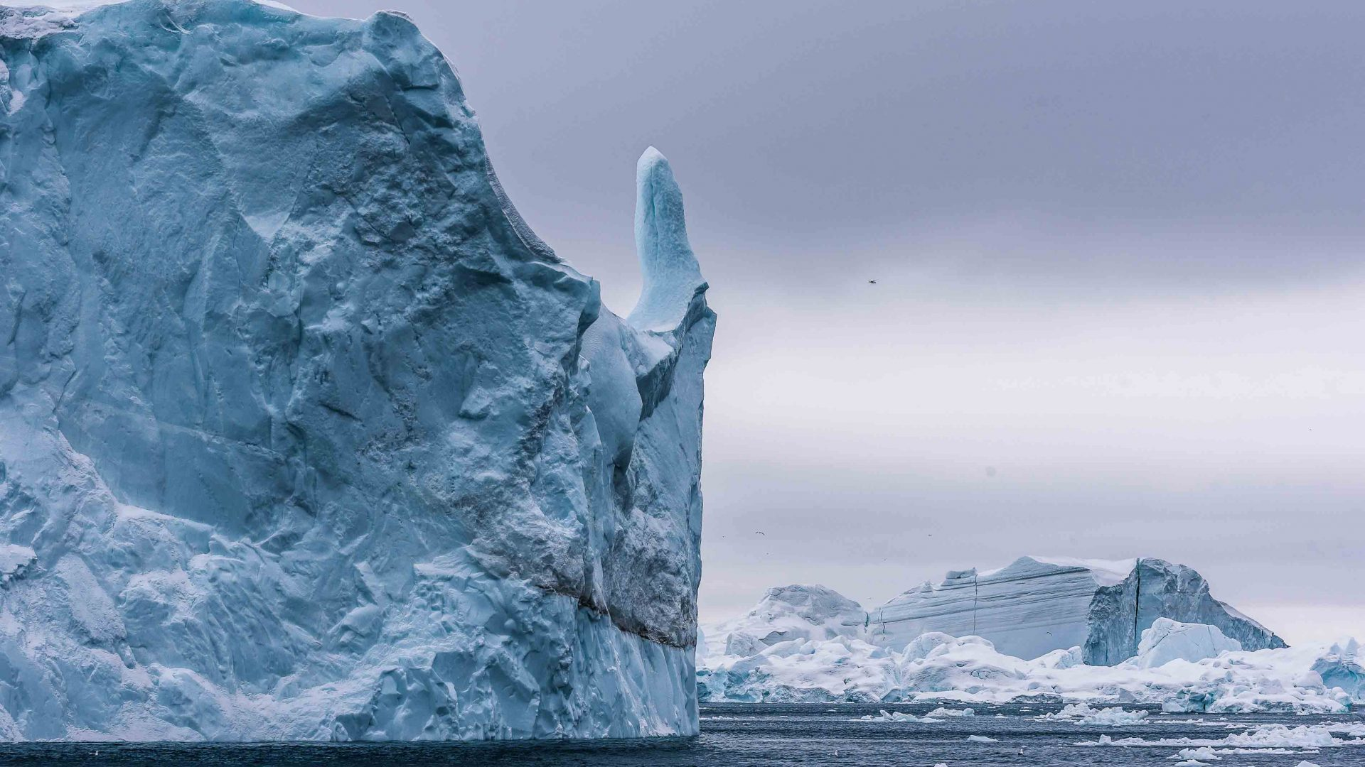 Many of the icebergs take on interesting shapes and profiles as they begin to melt.