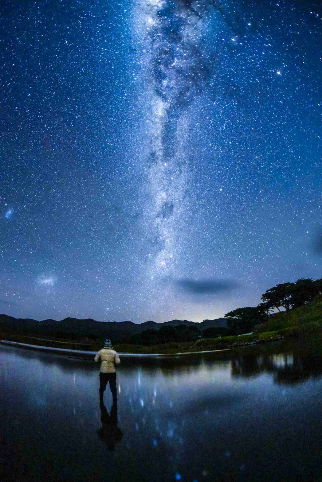 Night sky over Great Barrier Island, New Zealand, the world's first Dark Sky Sanctuary island.