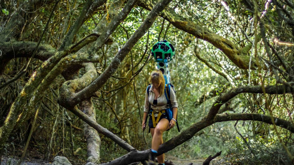 A woman carries the Google Trekker through the half Collared Kingfisher Trail, Garden Route National Park, Wilderness, Western Cape.