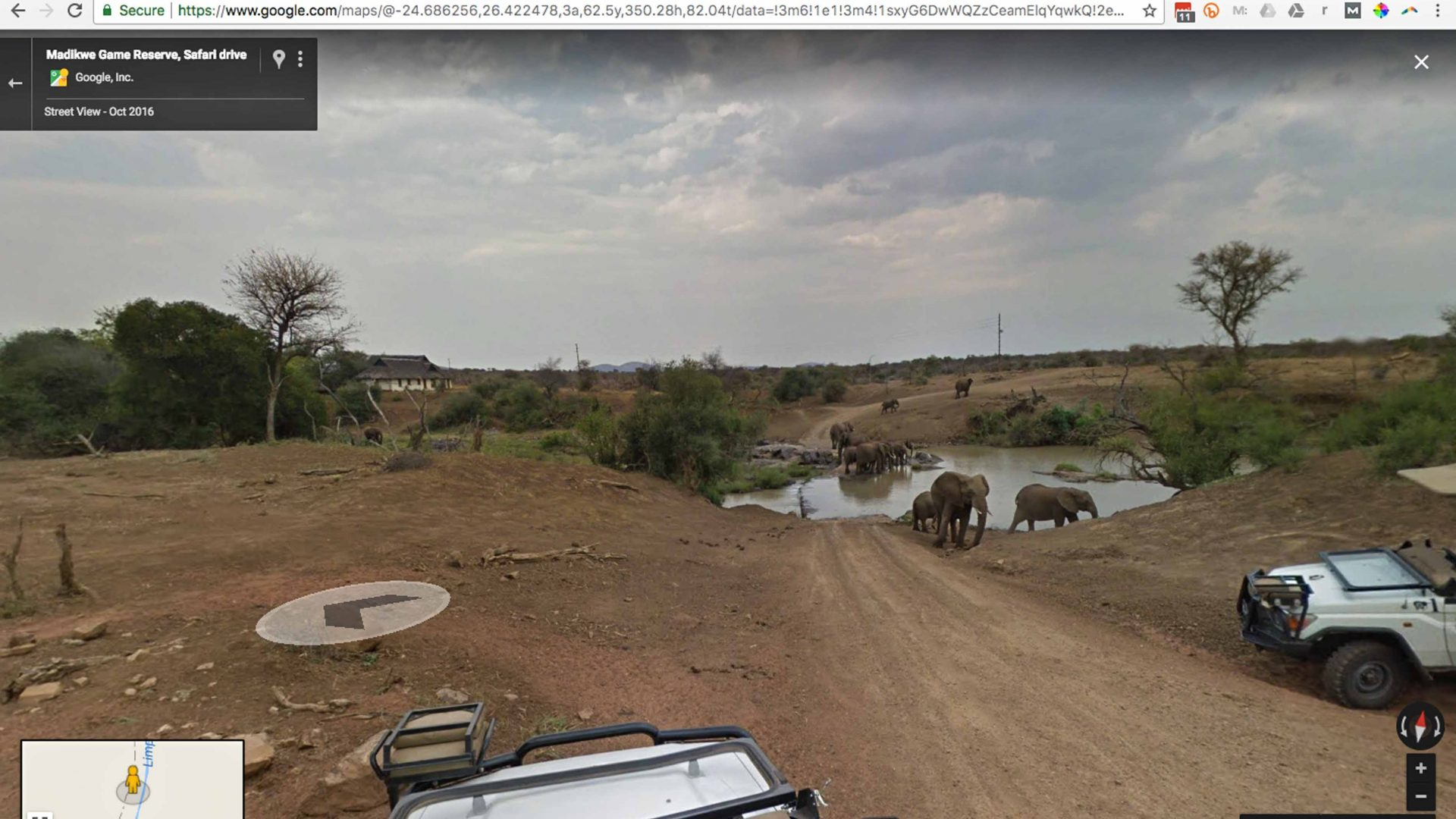 Google Street View screenshot showing safari-goers watching a family of elephants as they cross the Limpopo River in the Madikwe Game Reserve in South Africa.