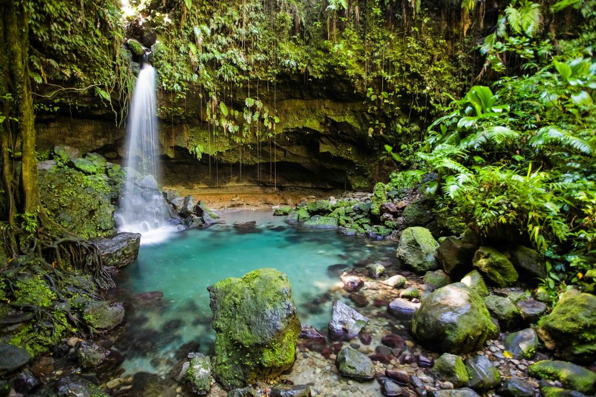 Tropical waterfall and turquoise pool in lush forest in Dominica.
