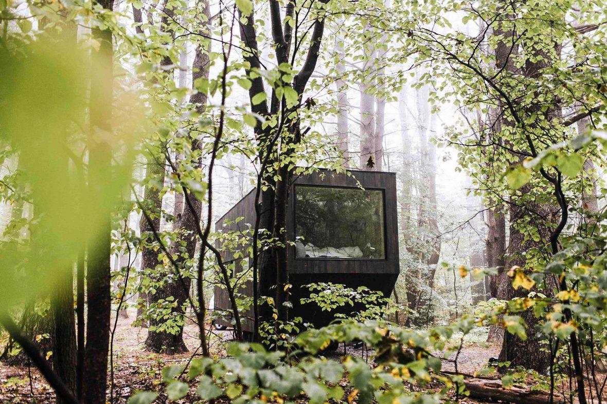 A tiny woodland cabin for a unique getaway.