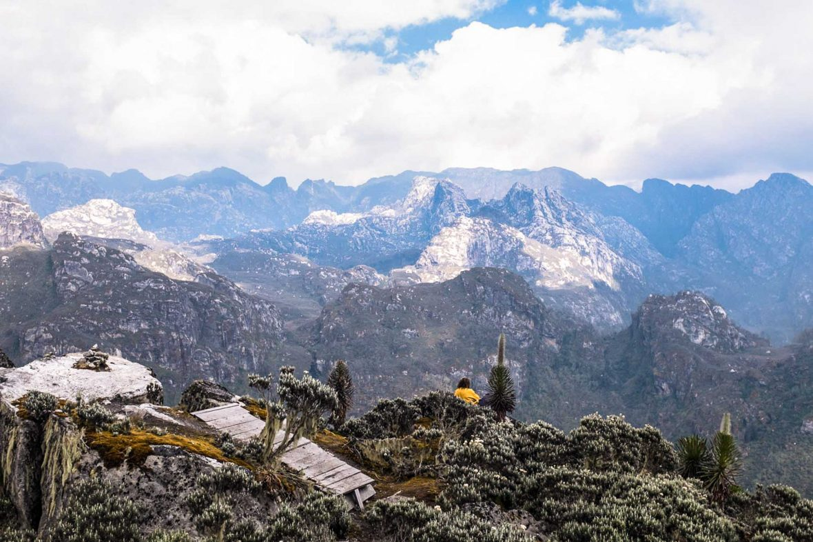 Looking out at the spectacular views of the Rwenzori mountains, Uganda.