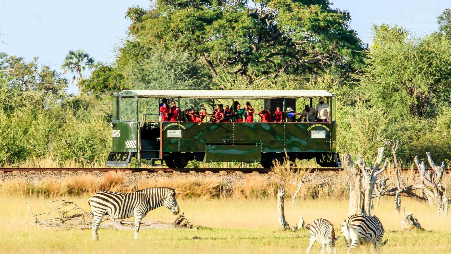 Tourists on the Elephant Express spot zebras in Hwange National Park, Zimbabwe.