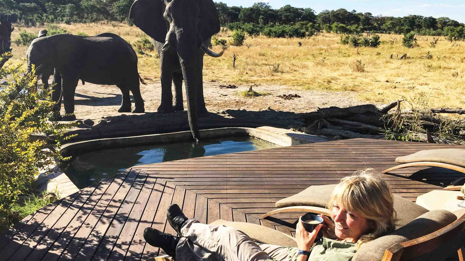 A tourist gets the best seats in the house for elephant viewing in Zimbabwe's Hwange National Park.