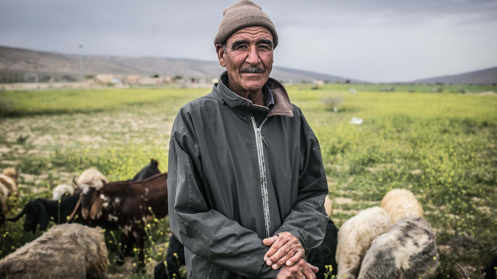 A shepherd from the village of Bozpar, Dashtestan county, Busher province.