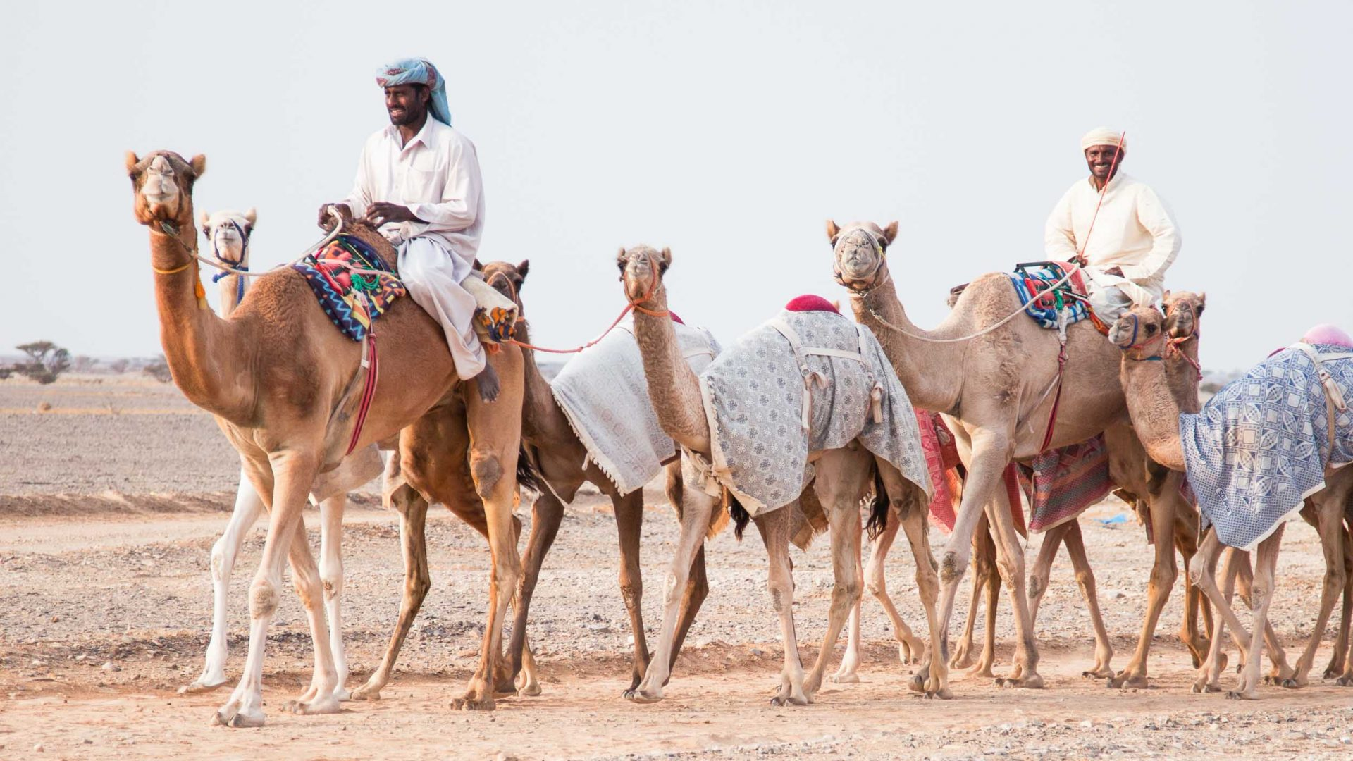 The duo come across a caravan of camels and their riders in the Empty Quarter.