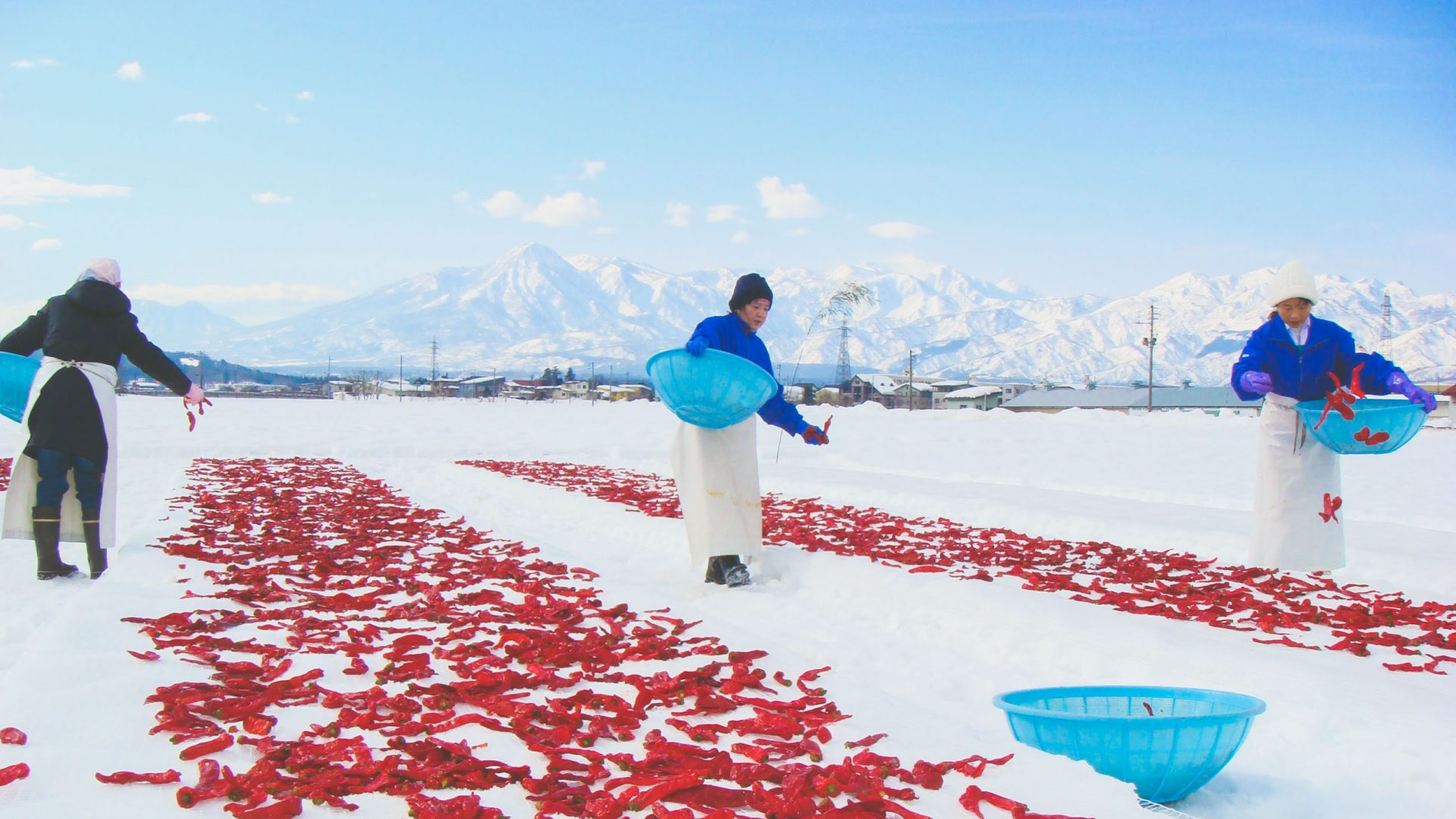 What's the magic ingredient in Japan's Alpine cuisine?