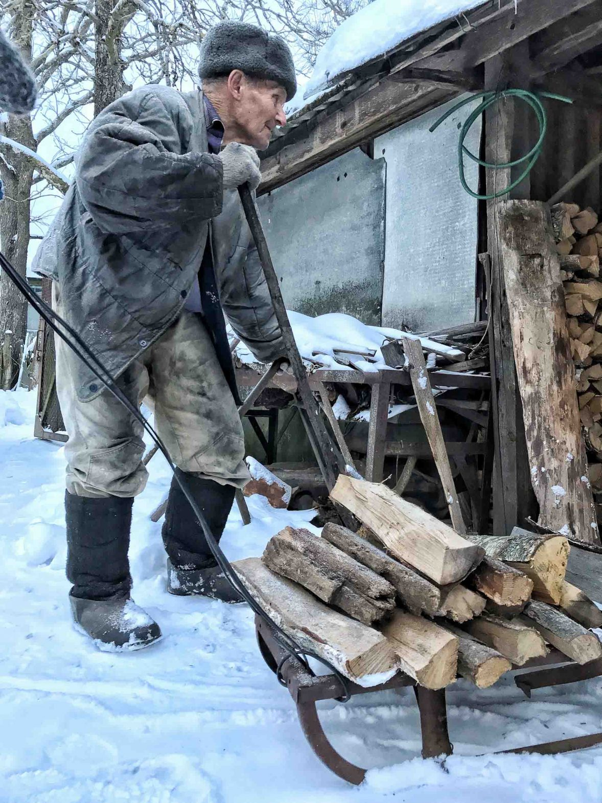 Ivan who lives in the Exclusion Zone collects wood by his home.