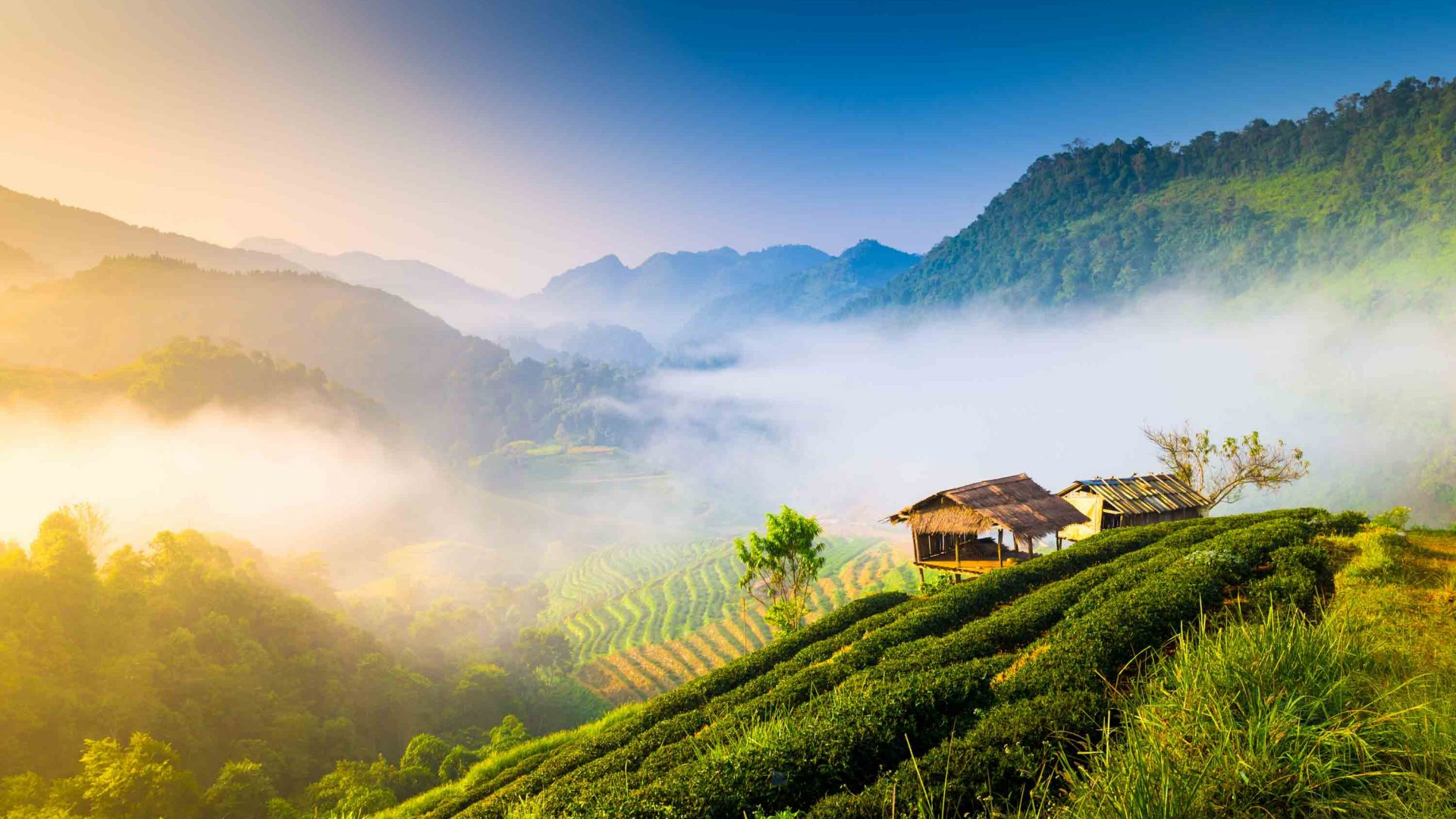 Beautiful sunshine and a misty morning in the mountains of Chiang Mai in the north of Thailand.