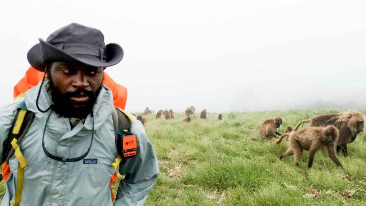 The man who walked 12,000 kilometers across the African continent