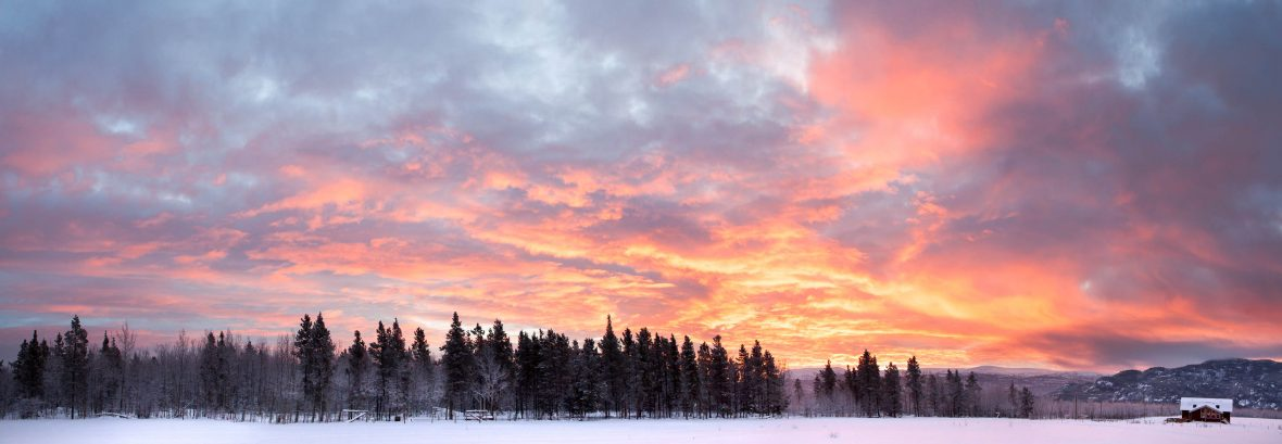 A December sunrise in the Yukon.
