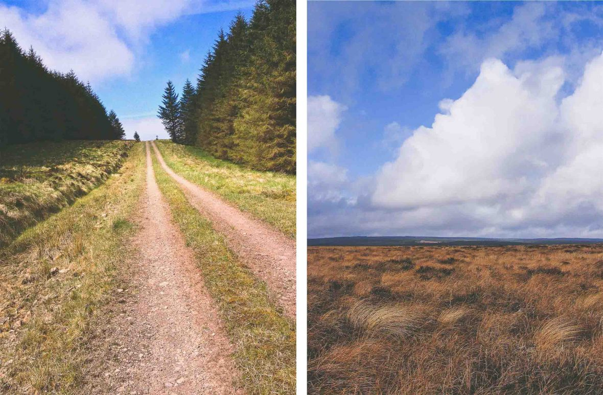 Left: Cleared tracks near Bullcleugh Gate; Right: Butterburn Flow, a wild, remote area of bogland on the Cumbria-Northumberland border.