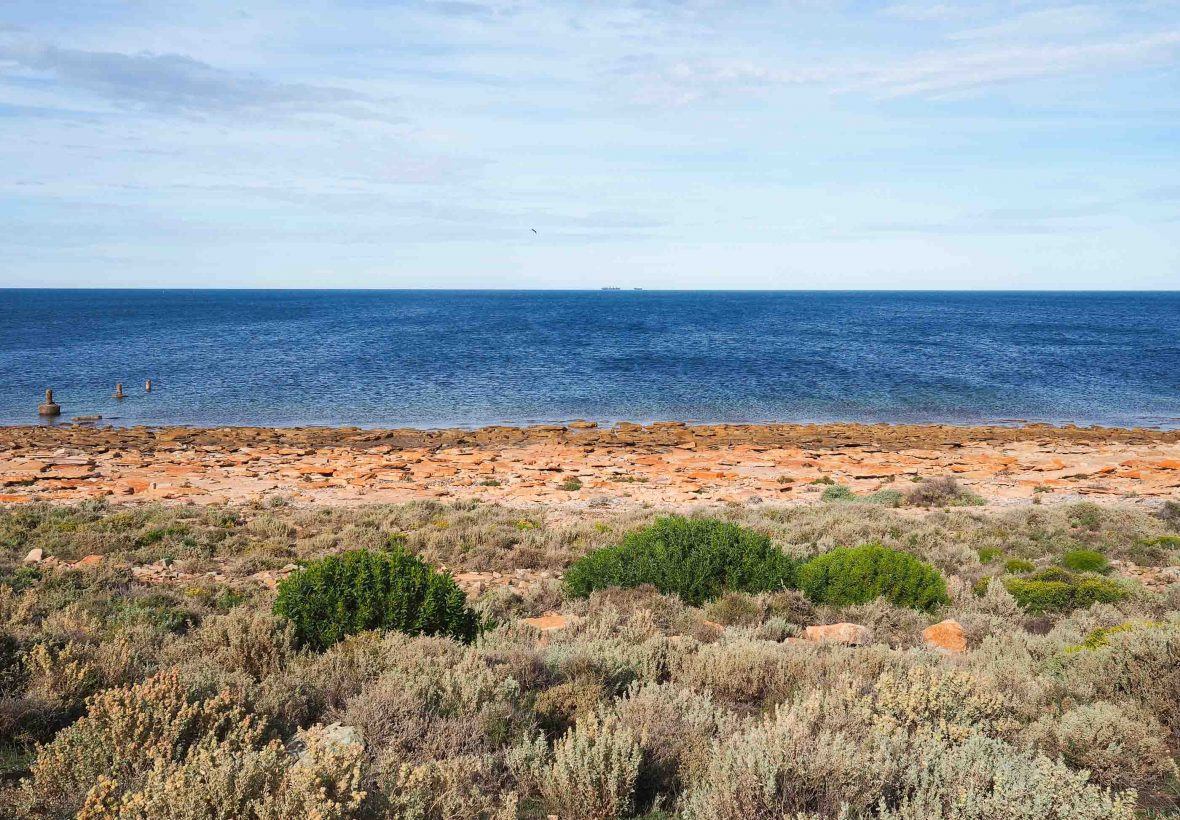 Upper Spencer Gulf Marine Park in South Australia, home to thousands of spawning cuttlefish.