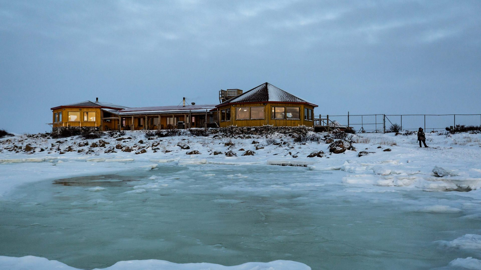 Seal River Lodge is on the polar bear's migration route in Manitoba, Canada, making it ideal for wildlife sightings.