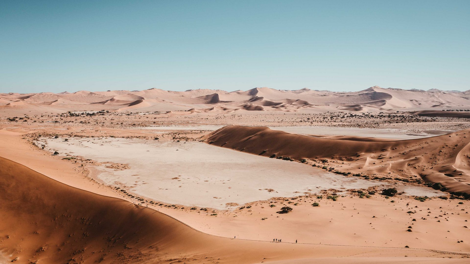 Namibia's Namib Desert, home of the world-famous sand dunes.