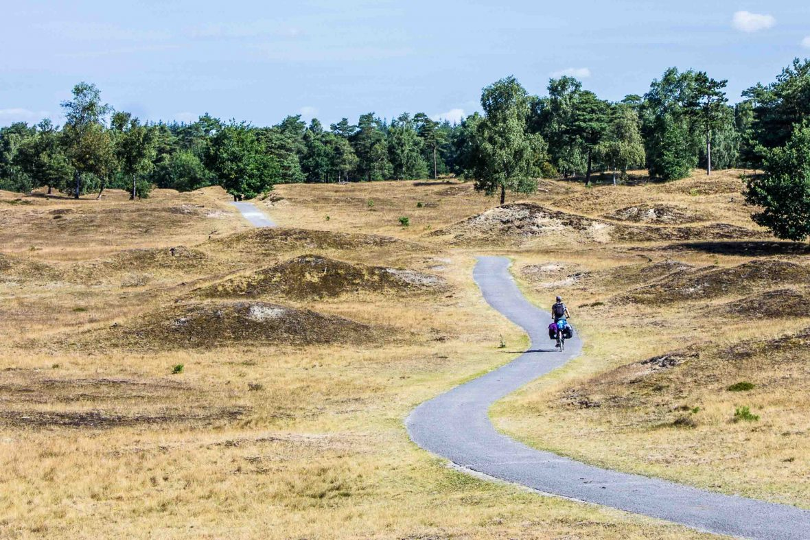 Cathleen cycling through a national park in the Netherlands.