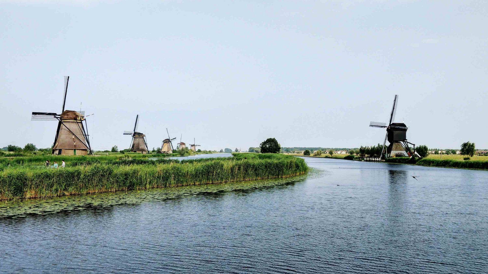 Windmills dot the landscape in Alblasserdam, Netherlands.