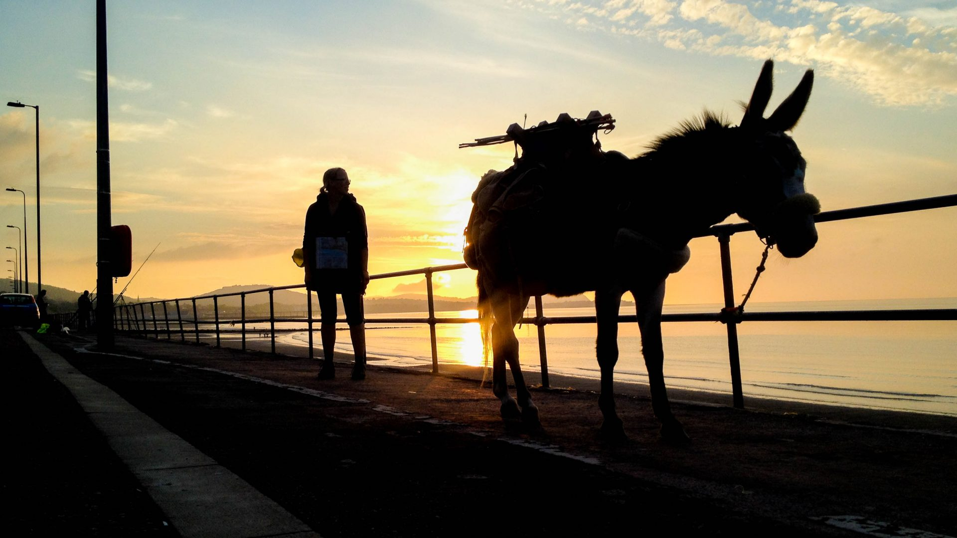 Hannah Engelkamp and her donkey Chico silhouetted against the sky.