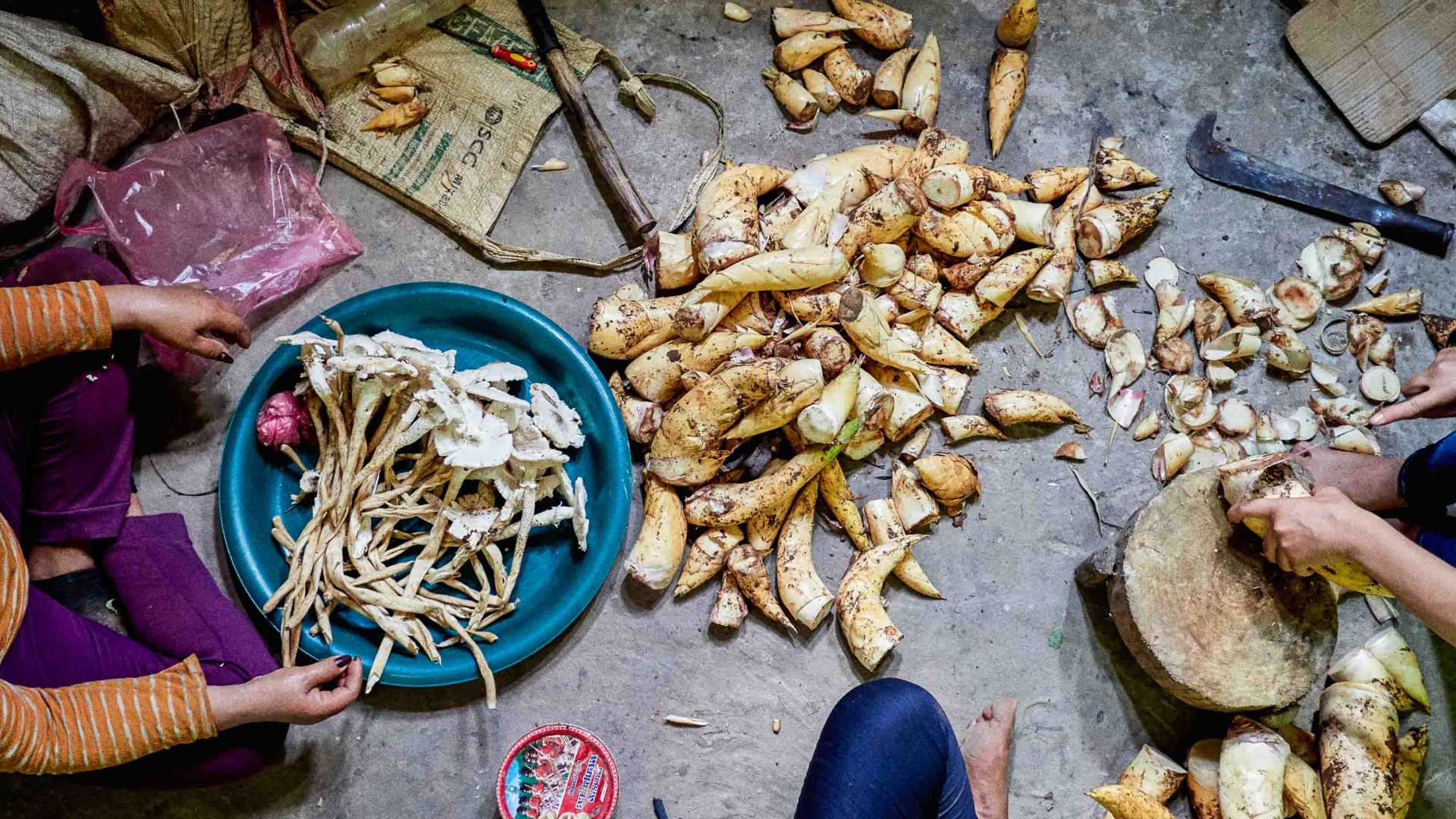 Mushrooms and other foraged food in Laos.