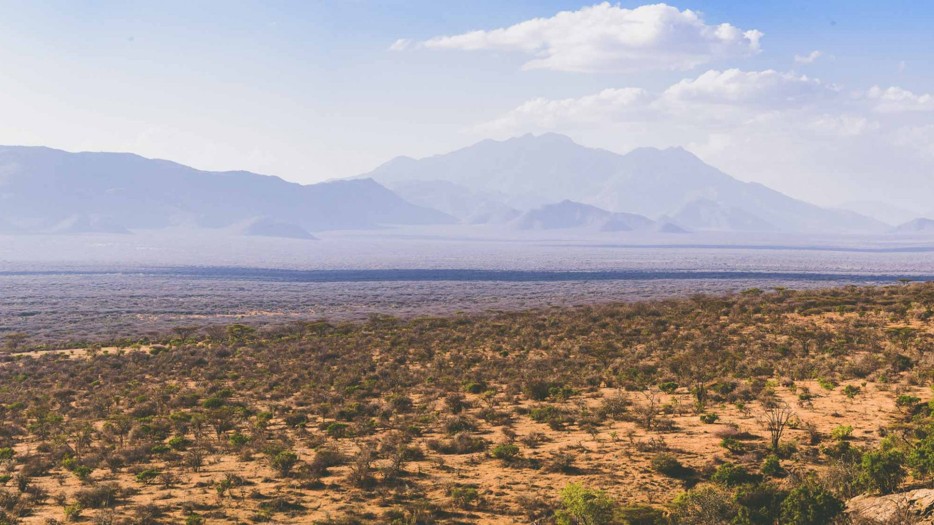 The vast, dry plains of Samburu, Kenya.