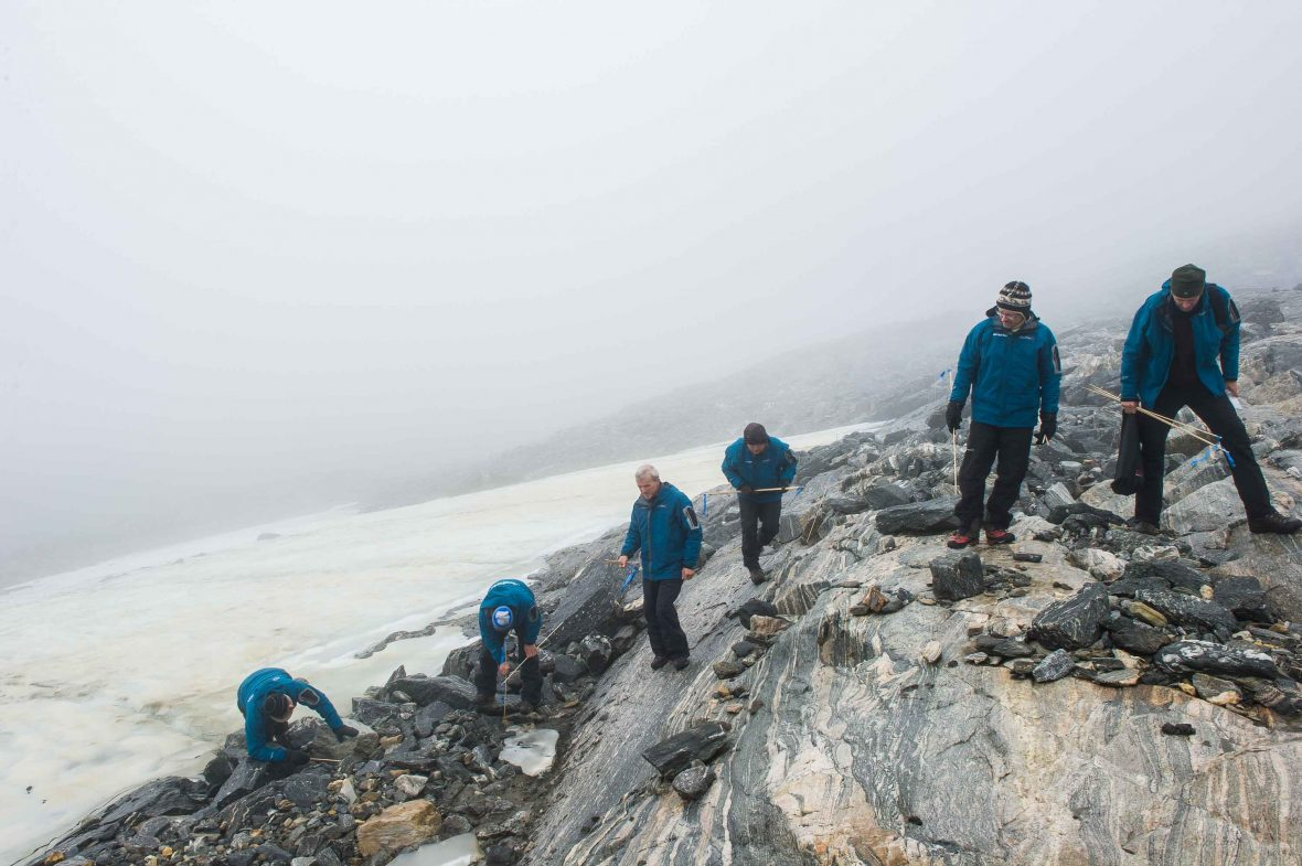 Fieldwork on Lendbreen glacier, showing the intense, systematic fieldwork along the edge of the melting ice.