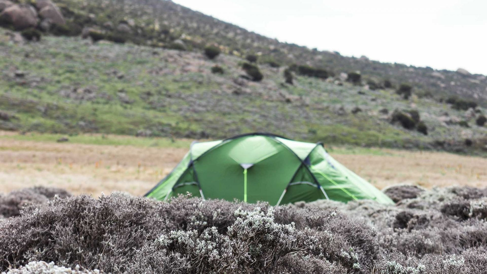 Camping in the Bale Mountains, Ethiopia.
