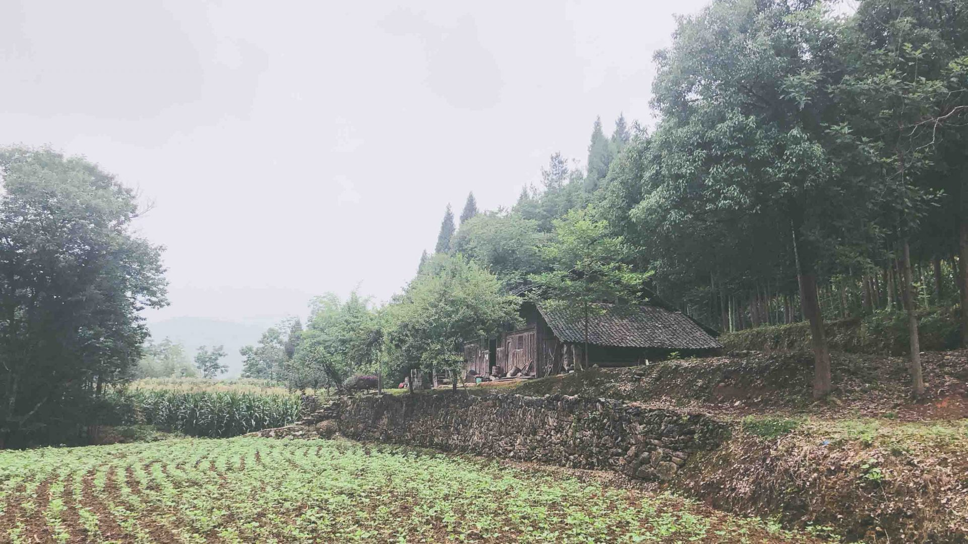 A traditional farming home in China's Hunan Province.