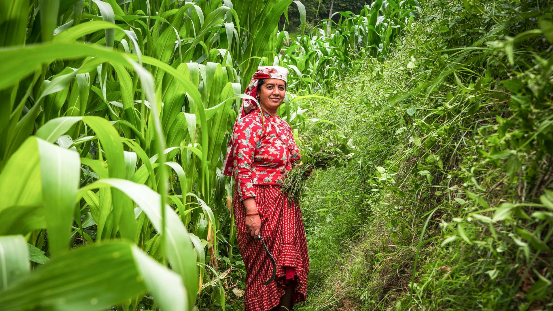 Where women rule: The Nepali foothill community of Panauti