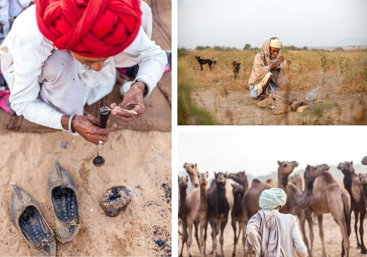 Scenes around the Pushkar Camel Fair.
