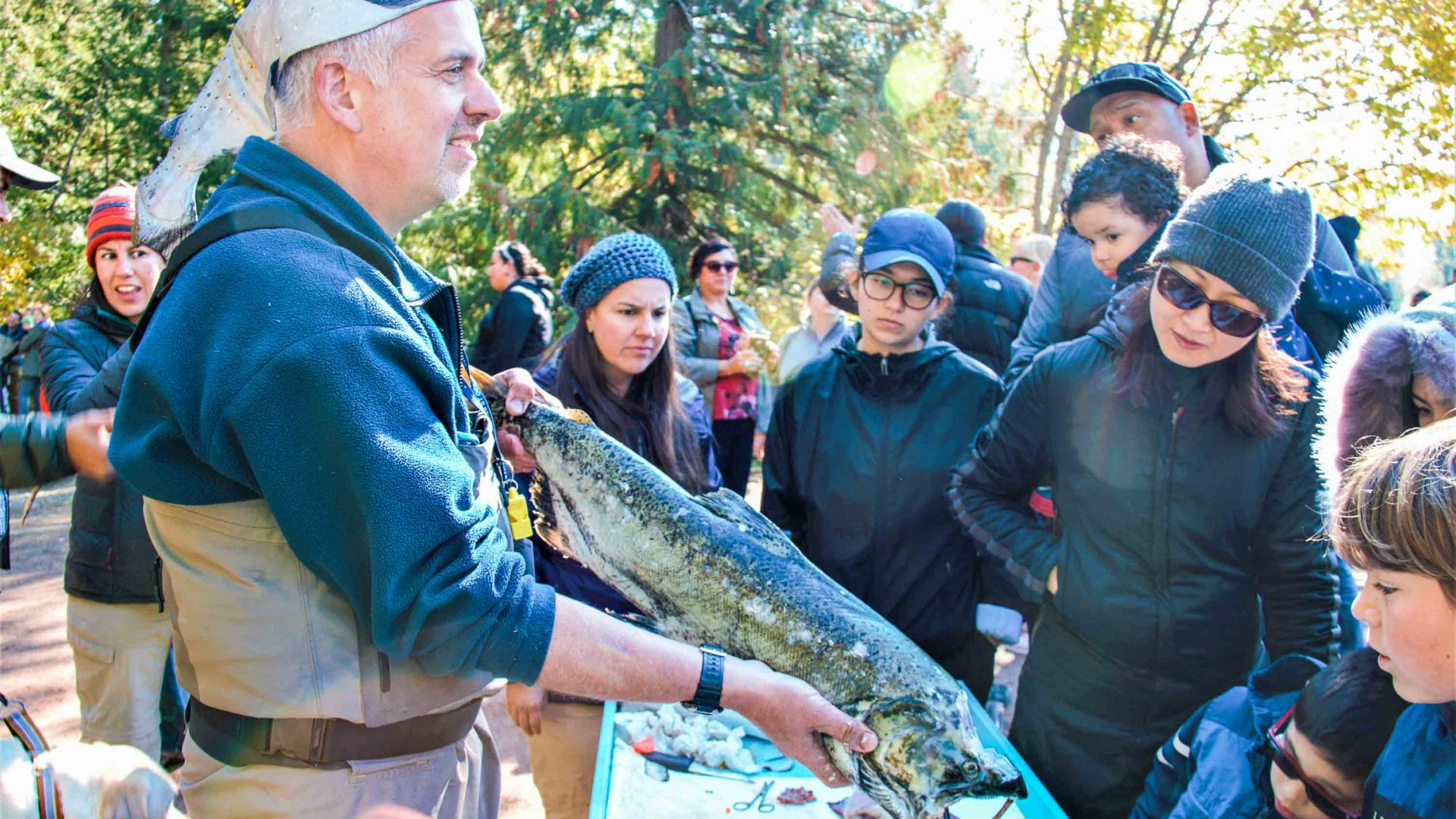 Guy Scharf, from Fisheries and Oceans Canada, captivates young children as he dissects two salmon.