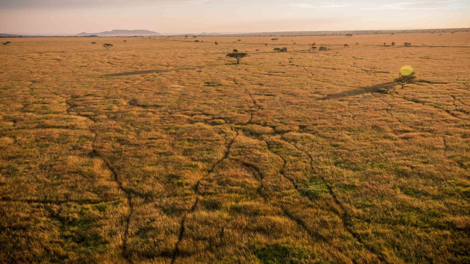 The vast plains of the Serengeti, Tanzania.