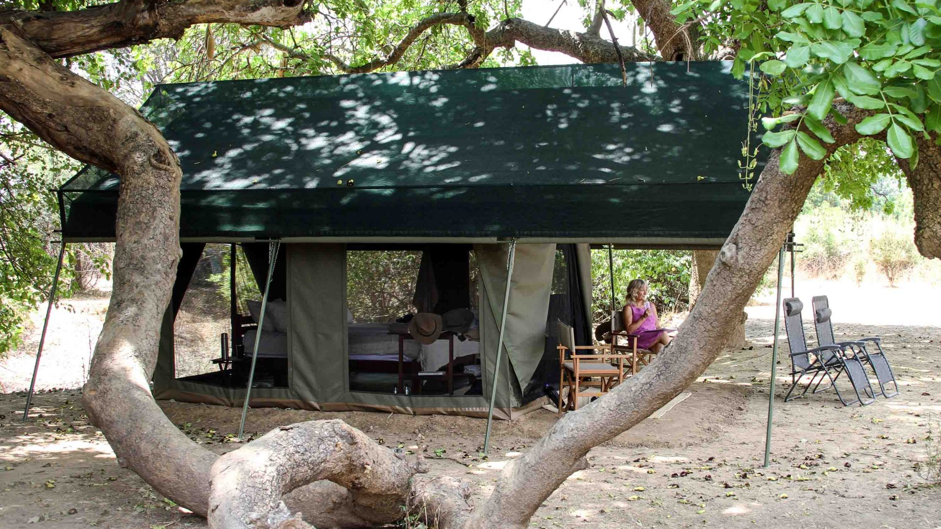 One of the three tented rooms under the shade of a sausage tree.