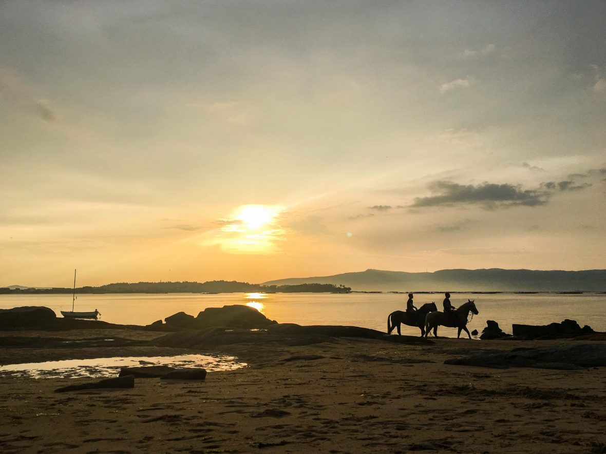 Horses on the beach at sunset in Vilanova de Arousa, Galicia.