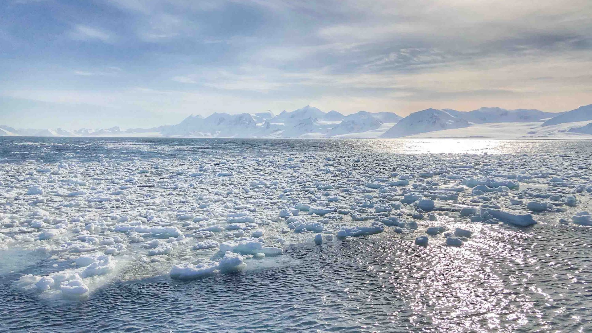 Navigating past icebergs while sailing through the Svalbard archipelago in the Arctic.